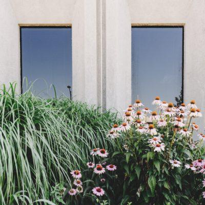 Arredare il giardino in stile minimalista: idee e consigli