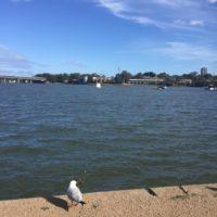 Appartamento a Sydney